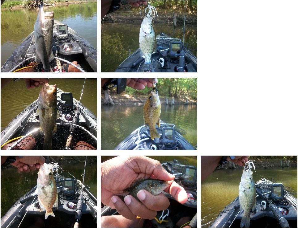 september-19-2011.jpg